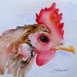 Watercolour painting. Rooster (SPA006) Artist: Seonaid Parnell