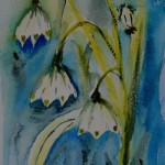 Watercolour painting. Bell Snowdrops (RWB0090) Artist: Vandy Massey