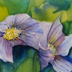 Watercolour painting. Anemone Pair (RWB080) Artist: Vandy Massey