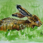 watercolour painting. MVA006 The Hare. Artist: Marily Valkijainen